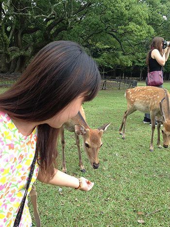 Nara_Ika Feeding_Re