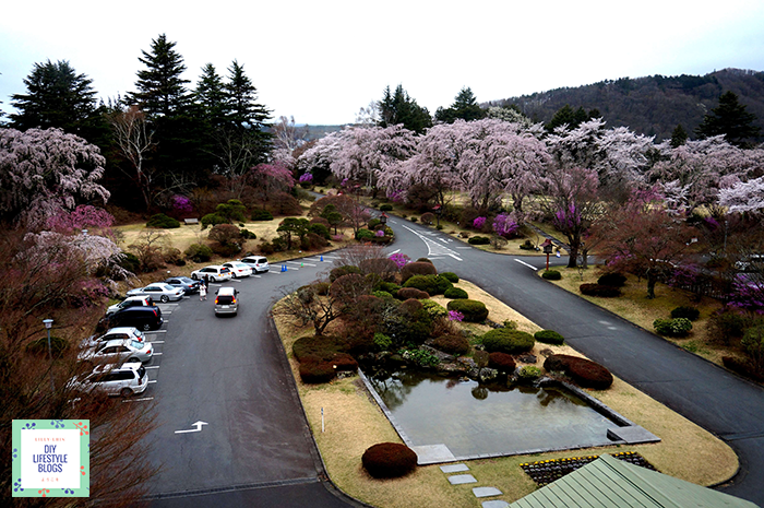 เที่ยวคาวากุจิโกะ Fuji View Hotel