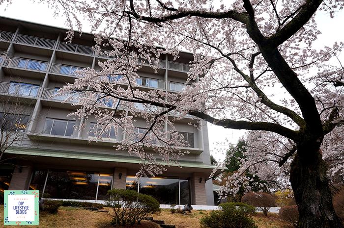 เที่ยวคาวากุจิโกะ โรงแรม