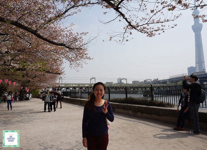 แนะนำที่พักโตเกียว แม่น้ำสุมิดะ