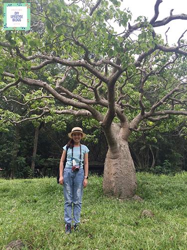 Eco Tourism_9